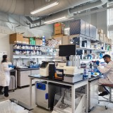 Recognized as a life sciences cluster and an established hub for cell and gene therapy, Philadelphia is experiencing exponential momentum in life sciences real estate and development. The region ranks third in the...